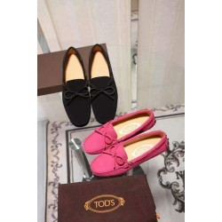 Laced Tods Loafers